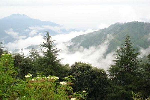 Chail – Beautiful Place To Visit In Himachal Pradesh