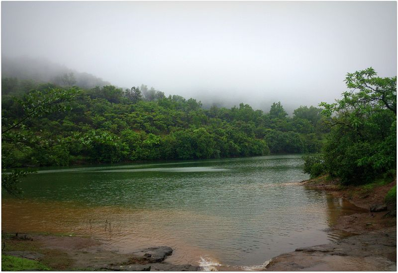 Bhushi Dam Lonavala Tourism